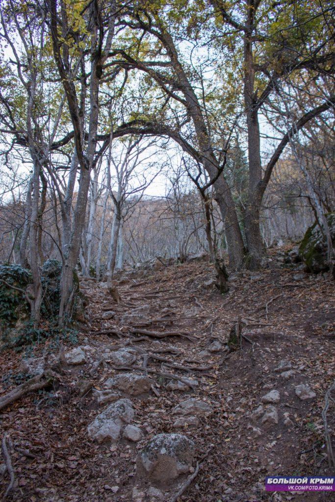 Спуск к водопаду Су-Учхан